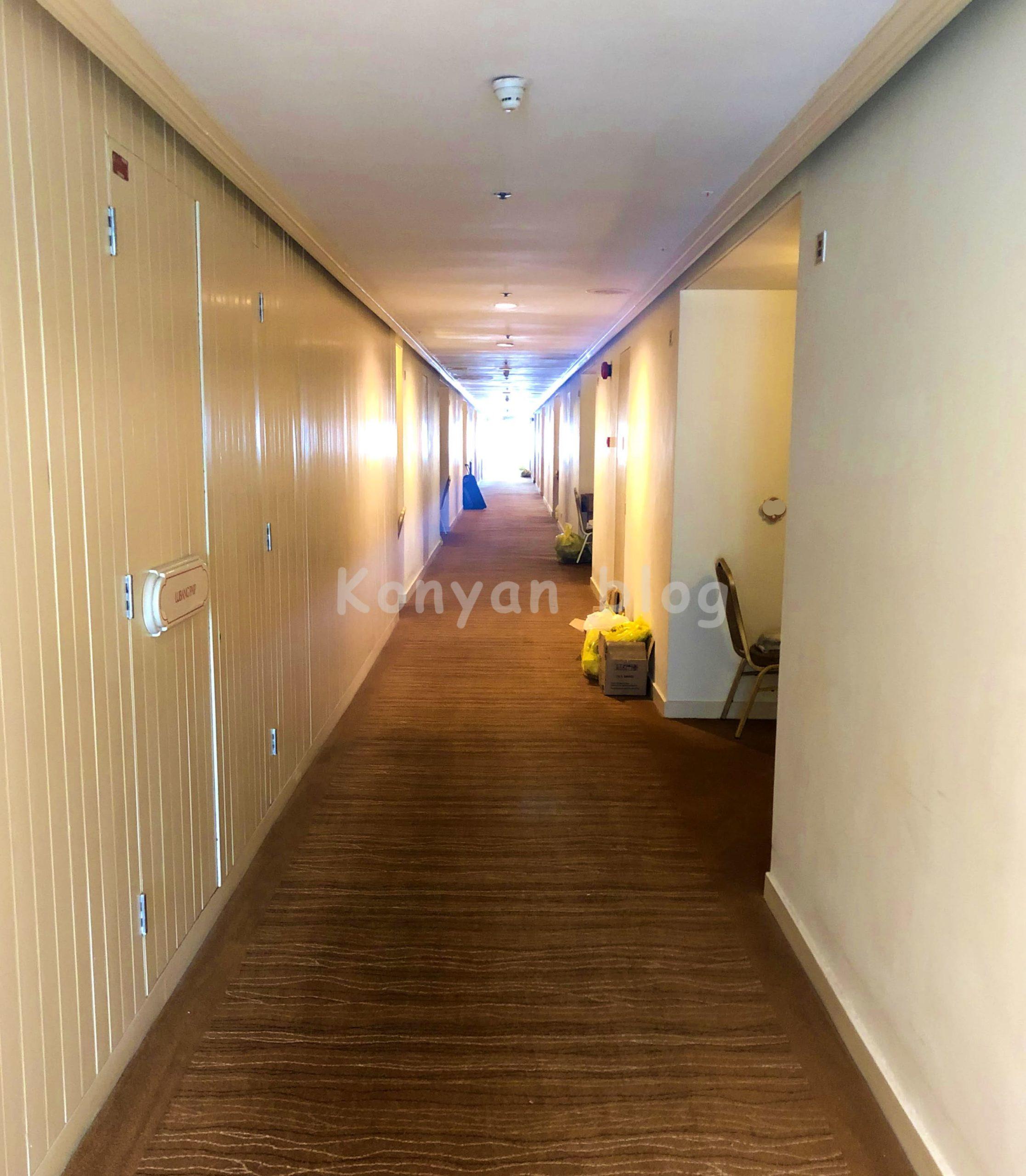 Istana Hotel 隔離 廊下
