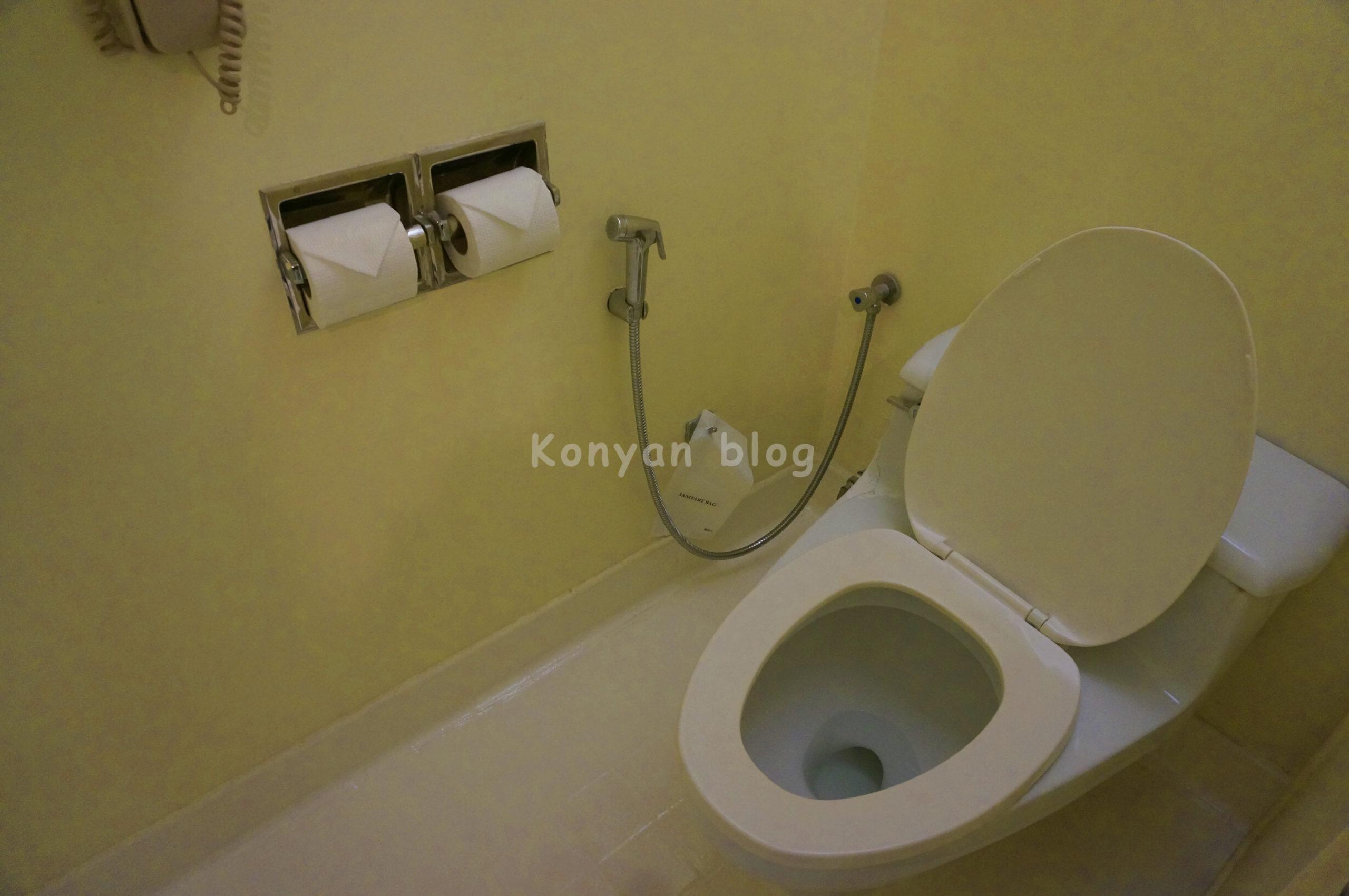 toilet istana hotel
