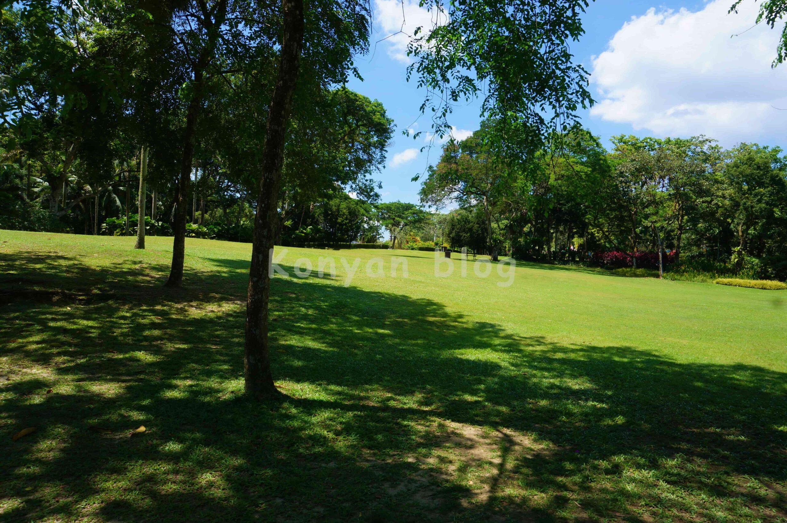 Perdana植物園 芝生
